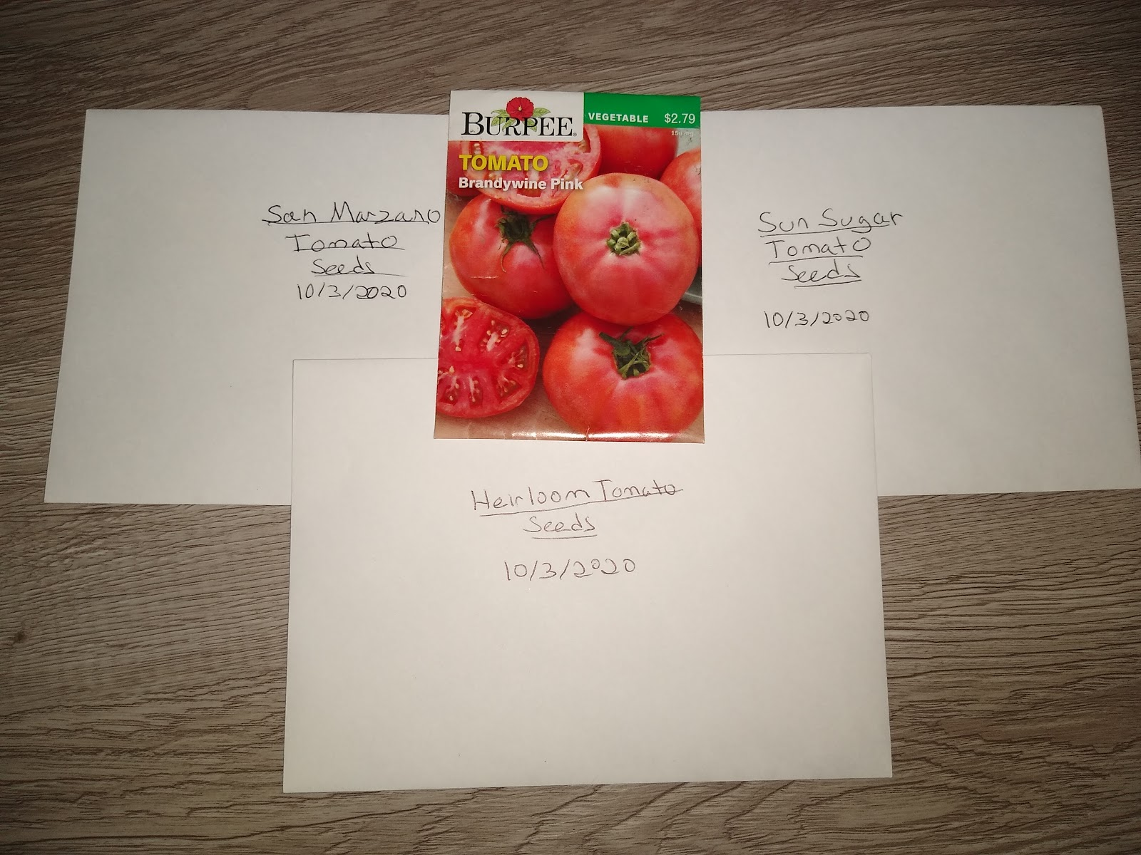tomato seed starting planning