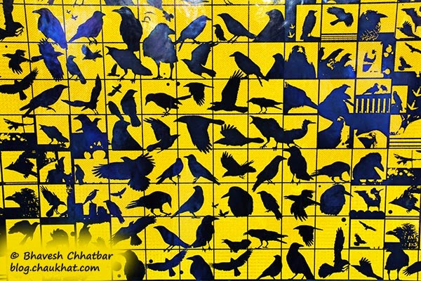 Kala Ghoda - Collage of crows