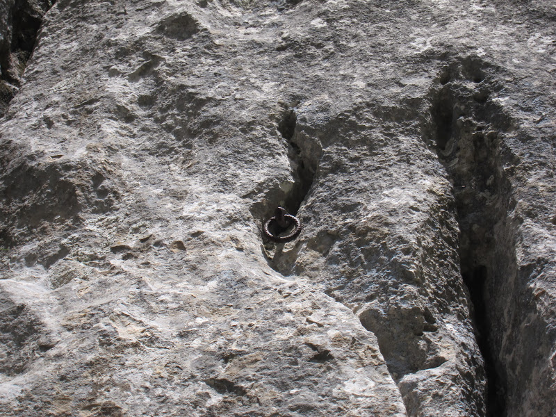 Fisurile Centrale - Calinet