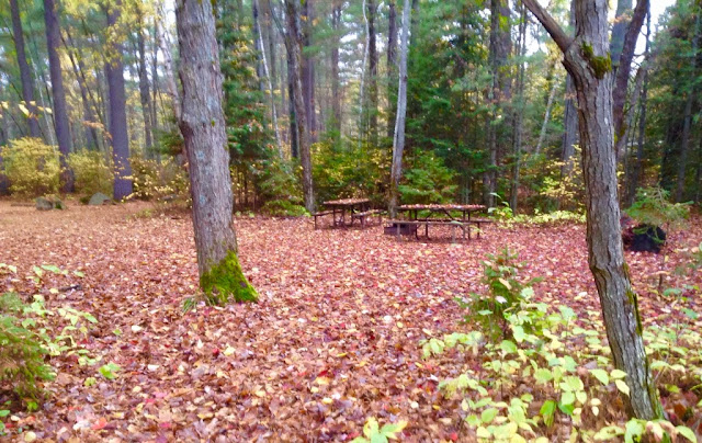 Fall camping at Bonnechere Provincial Park