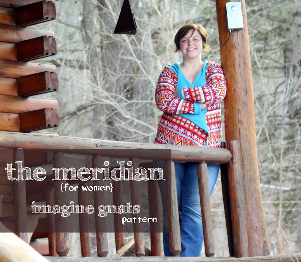 Making it mine: The Southwestern Meridian cardi hoodie