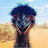 Bill Smith avatar image