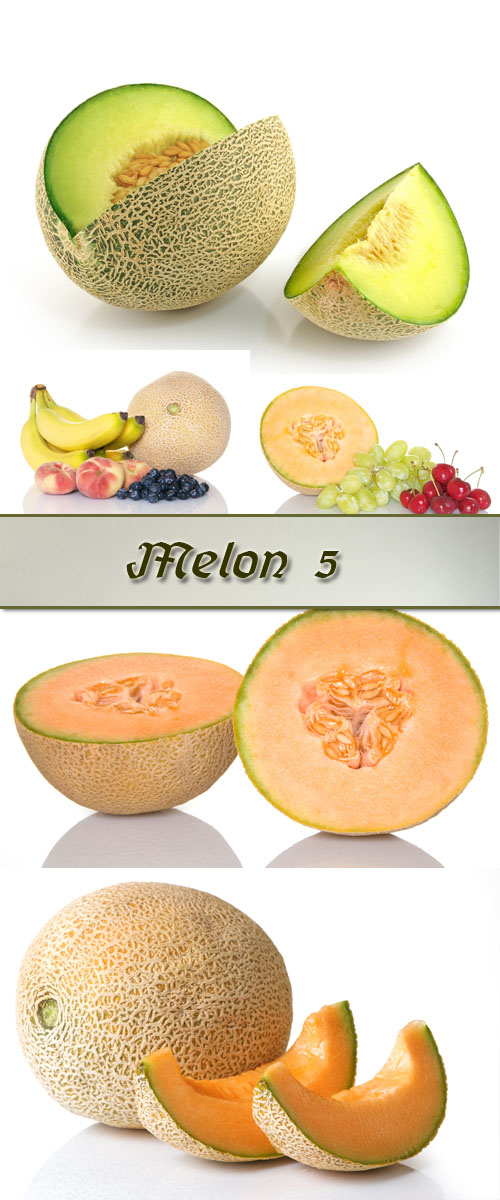Stock Photo: Melon 5