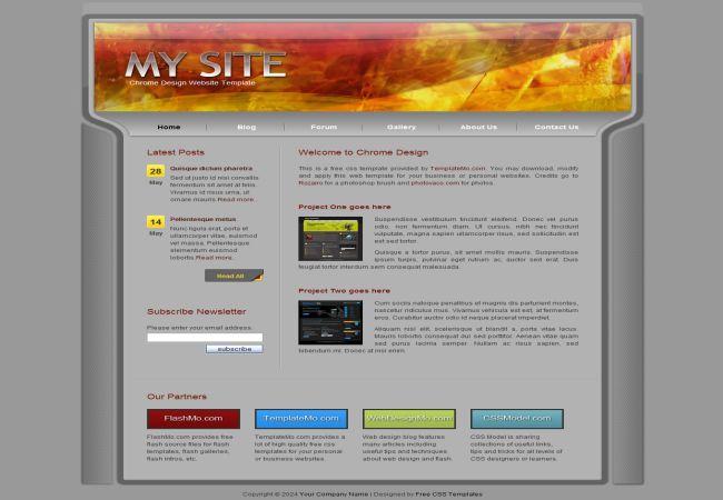 Digital Fire CSS Website Template