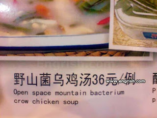 confusing foreign menu, space mountain bacterium
