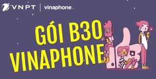 Gói B30 Vinaphone Miễn phí 100 phút nội mạng, 100 SMS miễn phí, 300 MB Data