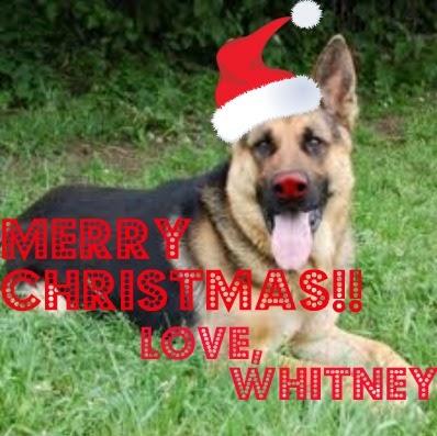 Whitney Mills Photo 15
