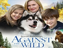 فيلم Against the Wild