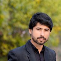hassan-shahzad-bhatt