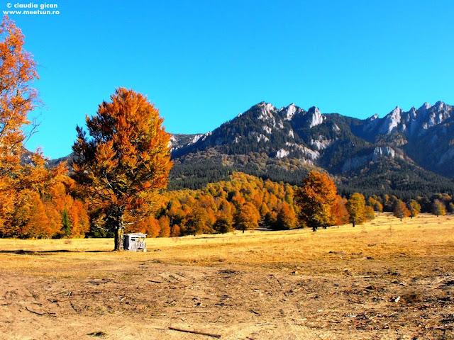 lumina si culoare - toamna in munti