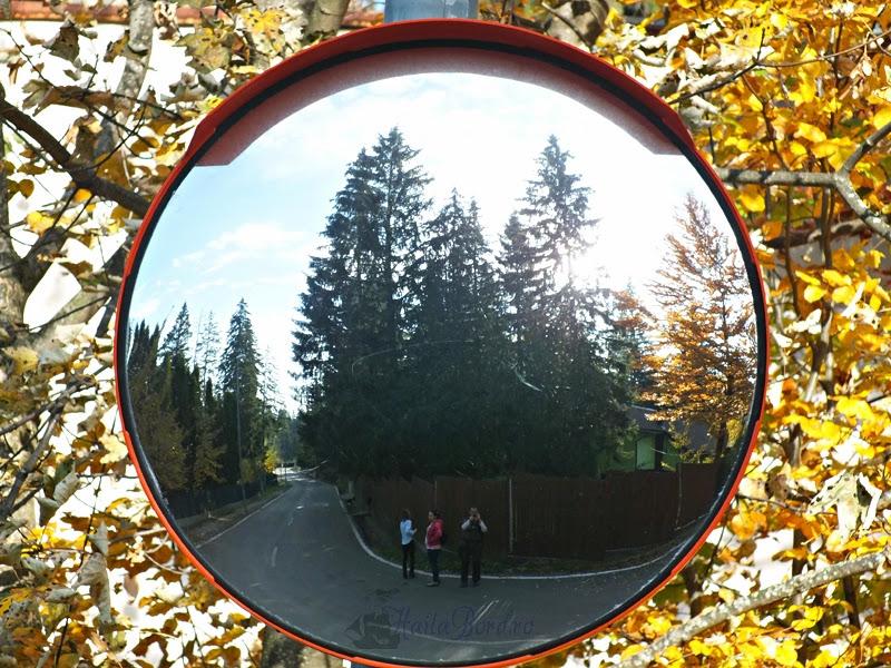 portret oglinda retrovizoare poiana brasov