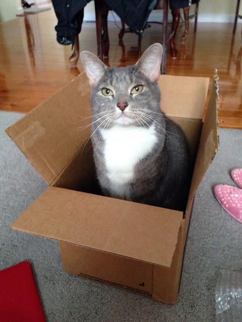 purfect box