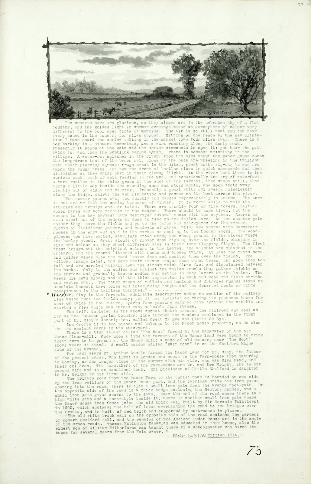 A Record of Shelford Parva by Fanny Wale P75 fo. 77, page 75: Description of The Manor Farm and the village in general continue with a black and white watercolour view showing a tree struck by lightning, 1914. Notes by F.L.W. [not in photographic copy]