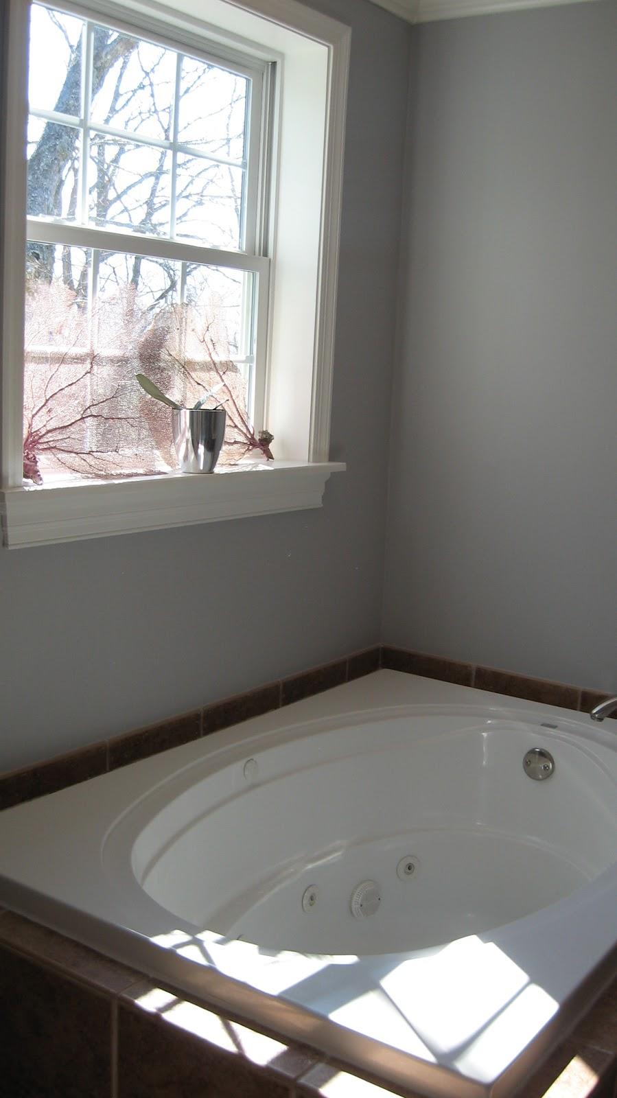 116 Autumn Ridge Rd Master Bedroom Bathroom