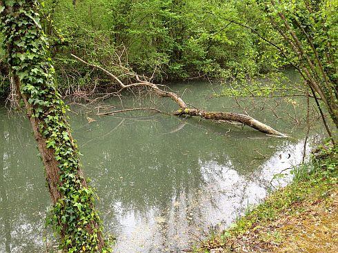 Stillgelegtes Teilstück des Rhein-Rhone-Kanals