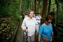 Orquesta con la Naturaleza en la Hacienda Buena Vista.