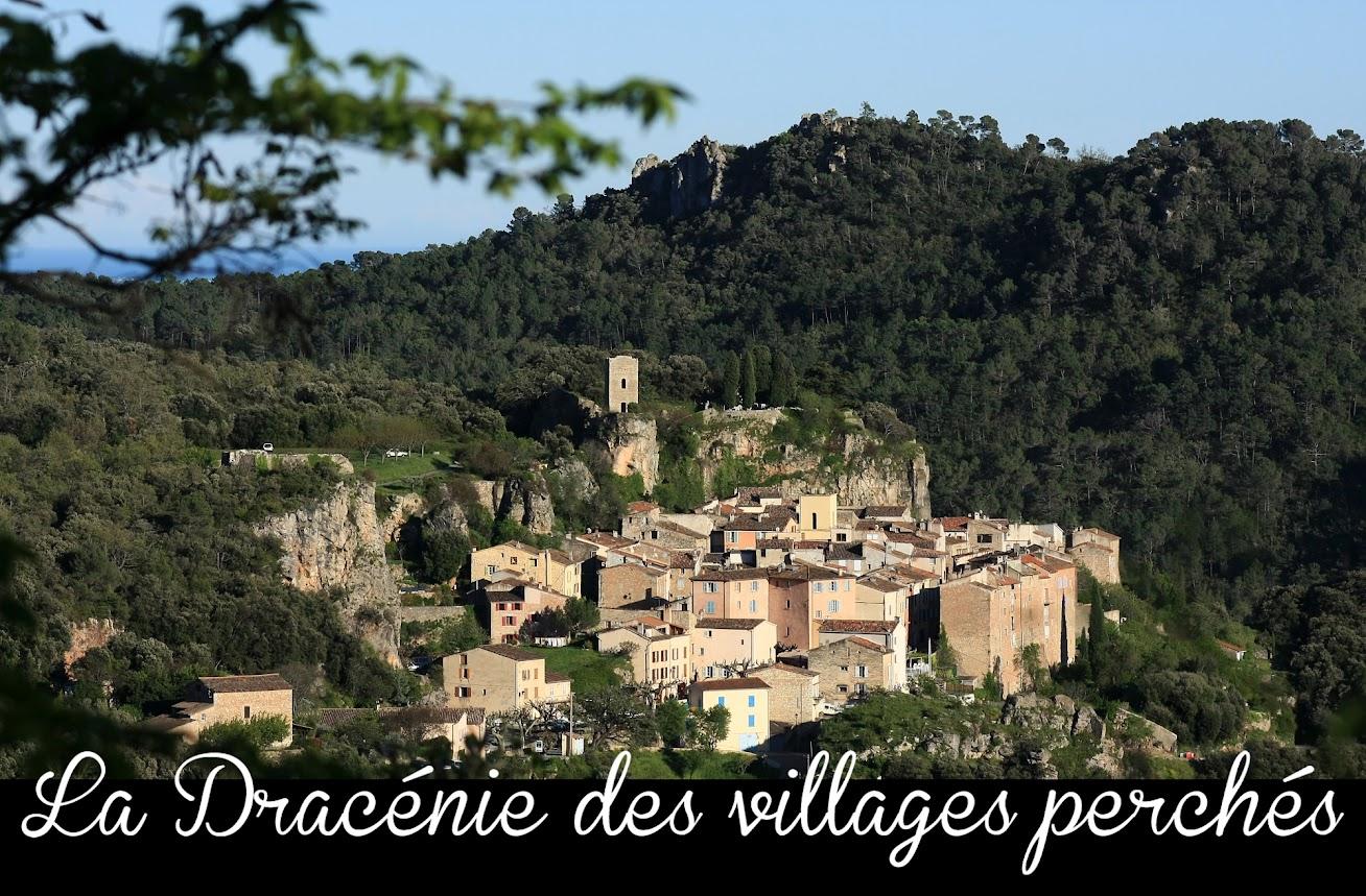La Dracenie des villages perches-Chateaudouble-dans le var et en provence