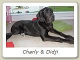Charly & Didji