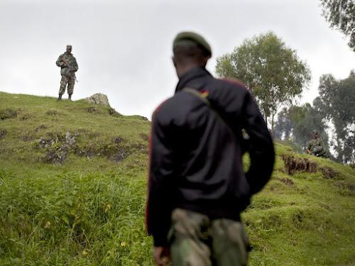 Affrontements entre soldats congolais et rwandais au Nord-Kivu