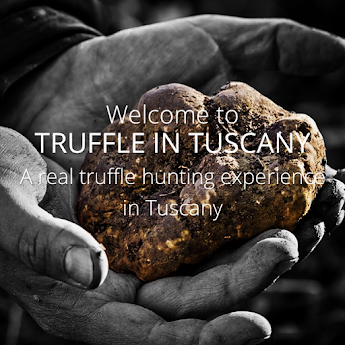 Truffle in Tuscany about