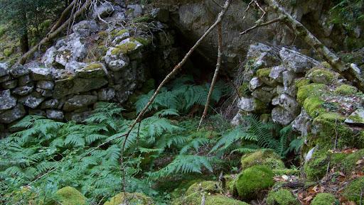 Abri sous roche troglodyte (bergeries de Bravinu)