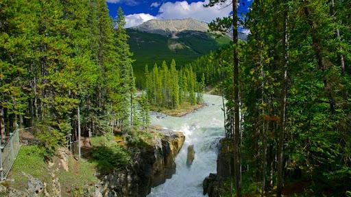 Sunny Sunwapta Falls, Jasper National Park, Alberta, Canada.jpg