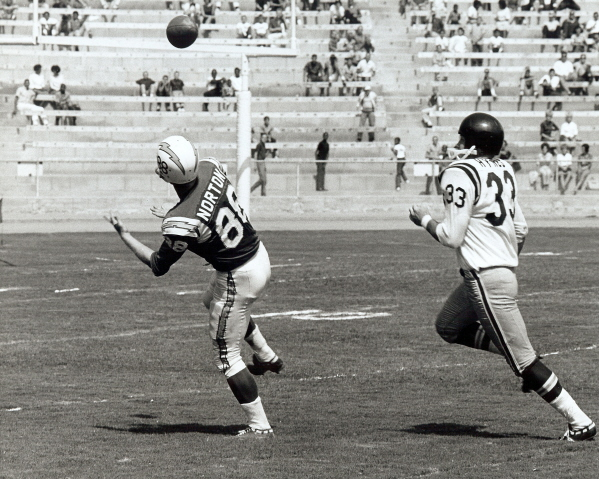 1962 New York Titans Season