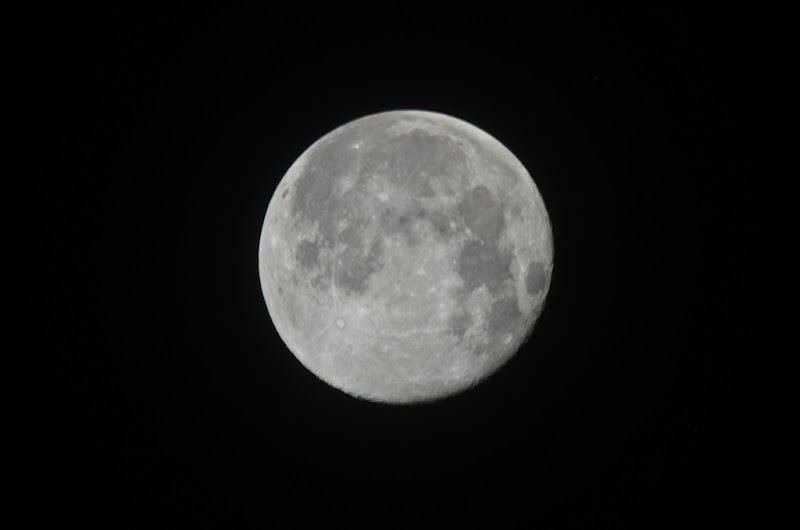 中秋都過了才在打月亮~XD .... 阿愣來插花