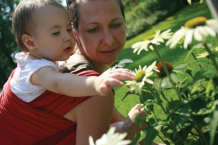 Egy hordozókendőben csücsülő kislány édesanyjával virágokat tanulmányoz
