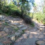 Bottom of the Iluka and Morella access track (261833)