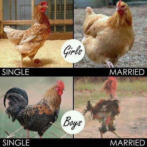 Single boys and girls vs. married boys and girls
