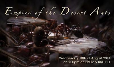 BBC Natural World: Empire Of The Desert Ants (2011)