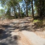 Trail near Dunkley Ave in Blackbutt Reserve (401809)