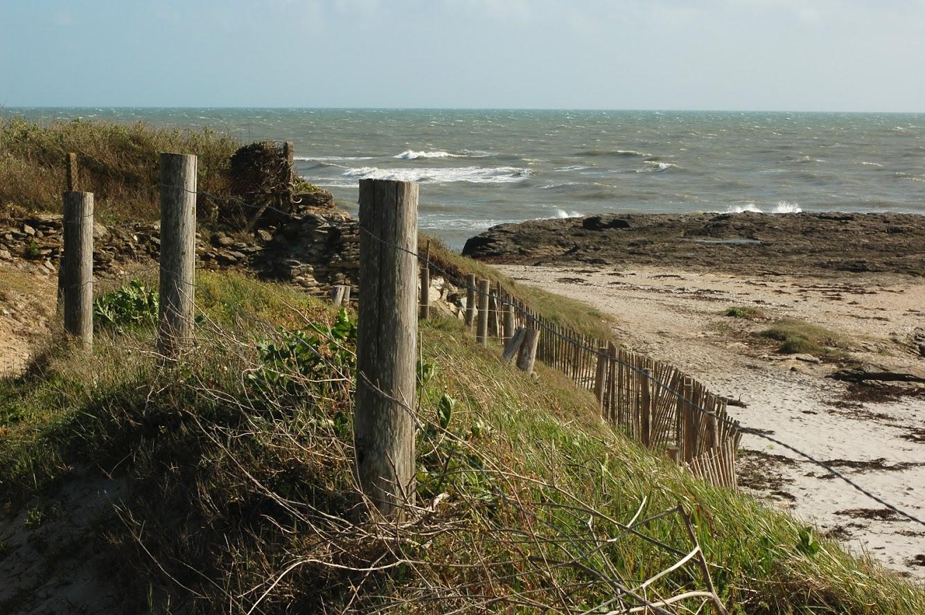 [bank] Vos photos de référence perso : Environnements naturels DSC_0152