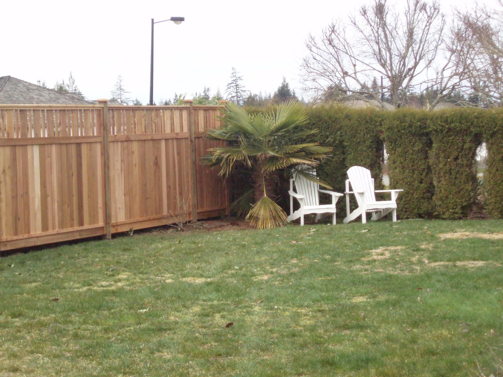 essay on good fences make good neighbors