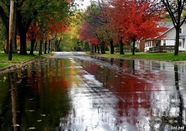 1001 hình ảnh Mưa Mùa Thu đẹp và buồn (có Thơ tình ngắn hay)
