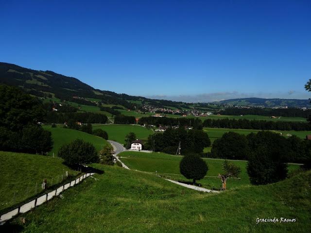 passeando - Passeando pela Suíça - 2012 - Página 15 DSC05618