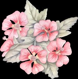 blomster%2520diamonds%2520eventyrland%2520%252858%2529.png