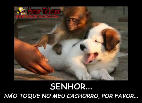 Senhor, NÃO toque no meu cachoro porfavor...