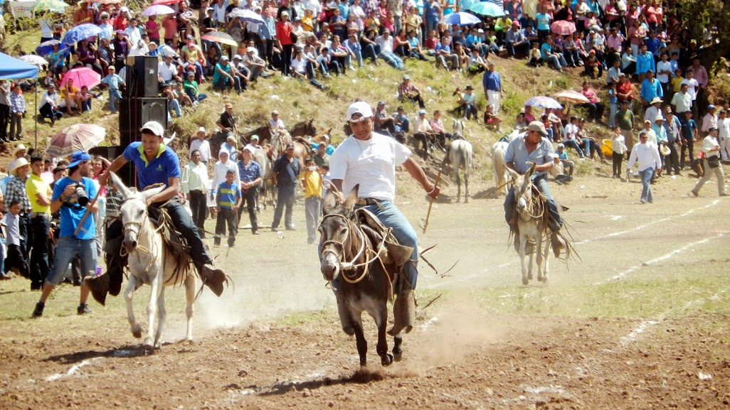 Competencia de burros. Foto: Radio Camoapa