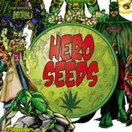 Katiria Rivera (Hero Seeds)
