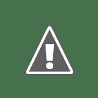 Ovum logo