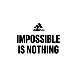 Чистая прибыль Adidas за 2015 г выросла на треть