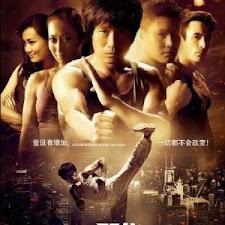 Kungfu Vô Địch - Kungfu Fighter