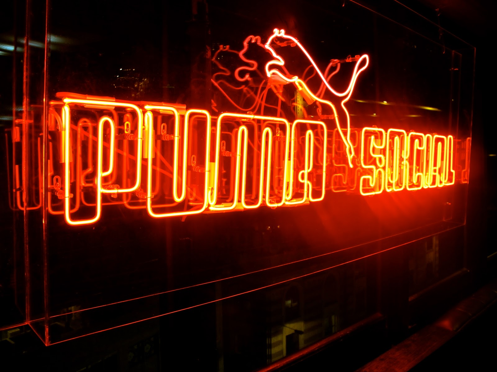 fondo pantalla club puma: