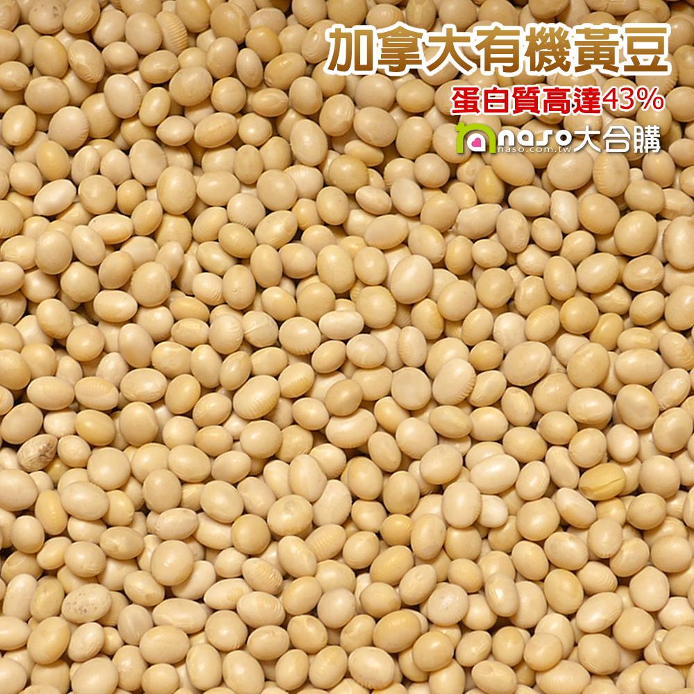 加拿大DG有機黃豆