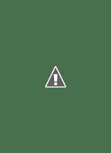 Rock Otoño Fest en el anfiteatro del parque de Necochea direccion de la Juventud