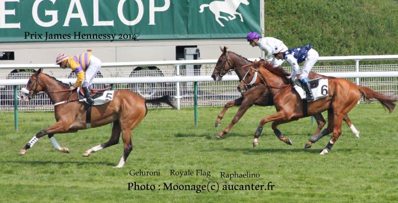 Photos Auteuil le 04-05-2014 IMG_0886