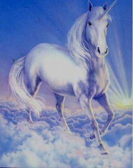 unicorn%252520%25252835%252529.jpg