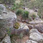 winding up the ridge (76882)